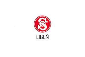 logo_sokol2